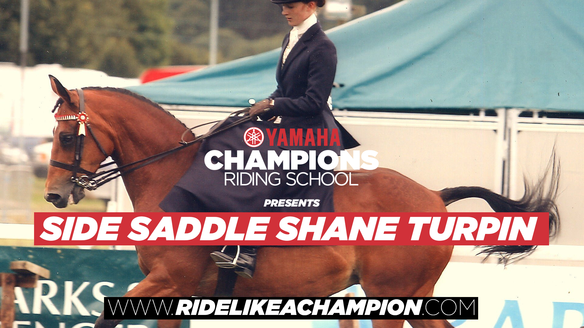 Side Saddle Shane