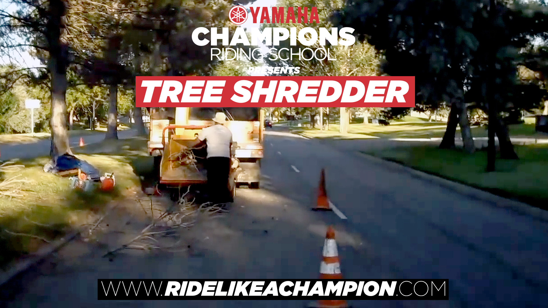 The Tree Shredder